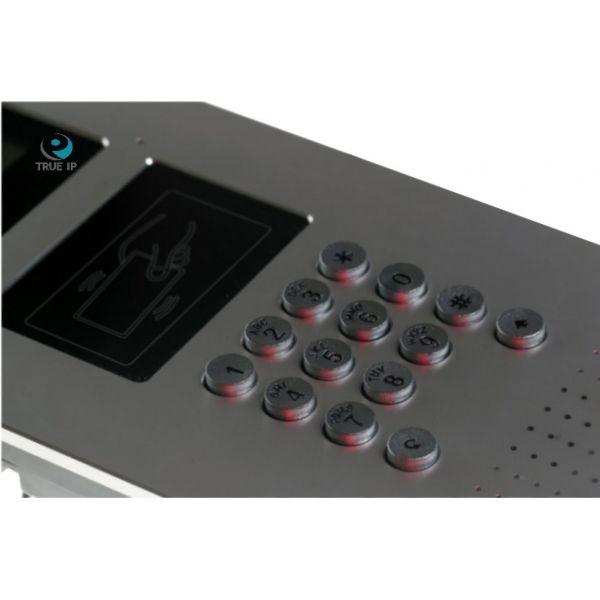 TRUE-IP TI-2220WD