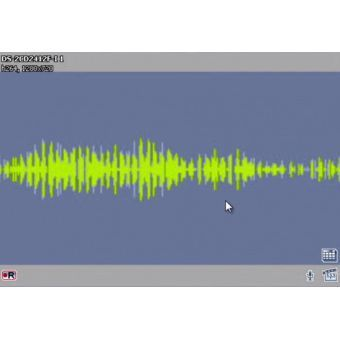 TRASSIR Sound Detector